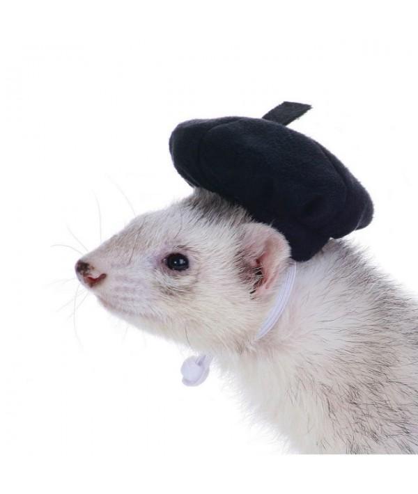 Marshall Headwear Beret - beret dla fretki