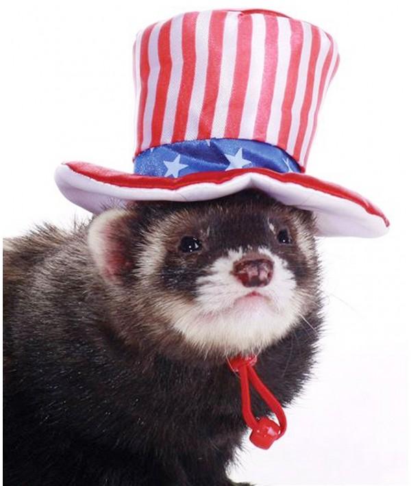 Marshall Uncle Sam Hat - kapelusz Wuja Sama
